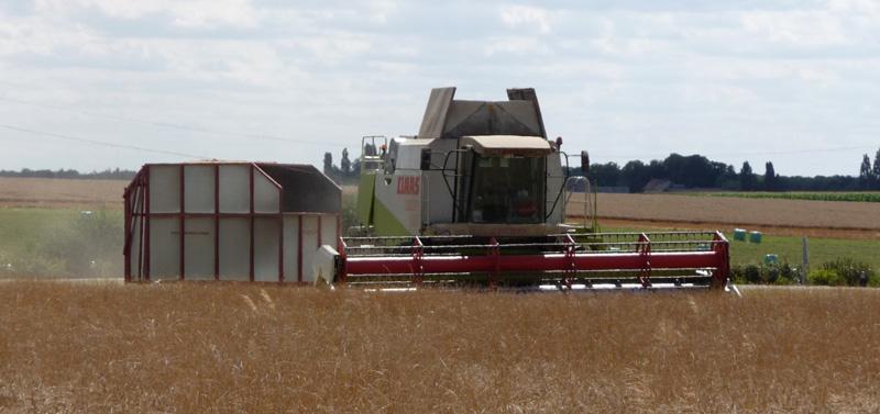 AgriStructures recolte menue paille